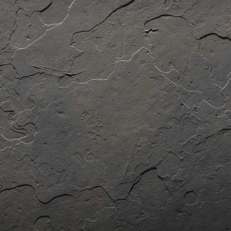 ravine web